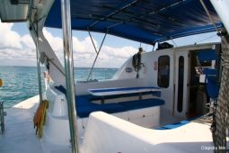 45 ft Sailing Catamaran 3