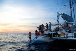 Zanzibar 50 ft Voyage Sailing Catamaran sunset fish
