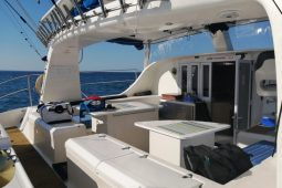 Mozambique Lesal 53 ft Power Catamaran cockpit overview
